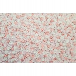 Blush Flower Wall