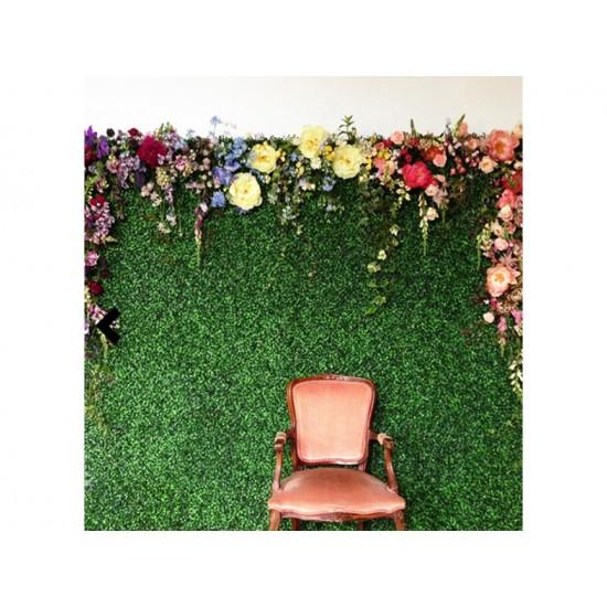 Grass Backdrop